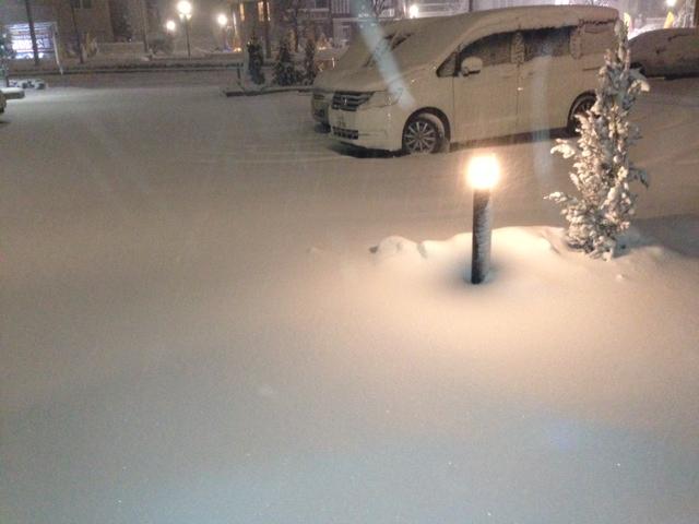 雪の降った夜